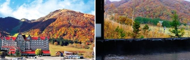 2017年 紅葉プランが人気の宿ランキング – トップ5は長野県と福島県に集中 – 楽天トラベル