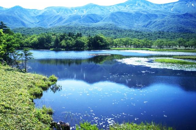 行ってみたい日本の世界遺産ランキング1位は屋久島 株式会社CMサイト