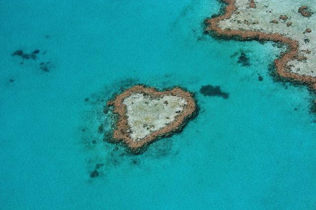海外ツアー検索人気ランキング2019年2月 かつて「世界最高の仕事」で名を馳せたあの島は今…?!トラベルコ