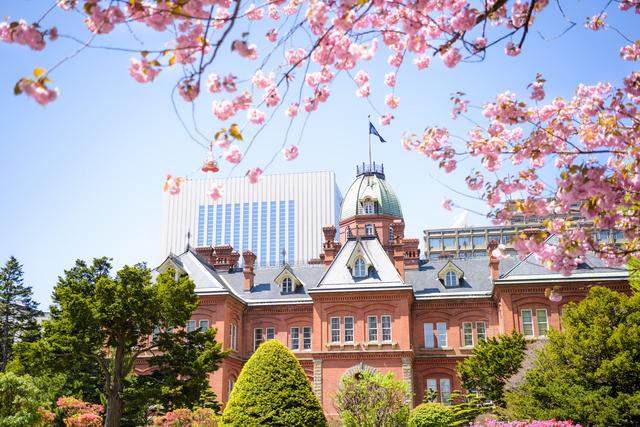 2019年3月の国内ツアー検索人気ランキングを発表!札幌が7か月ぶりに検索ランキングNo.1の座を獲得