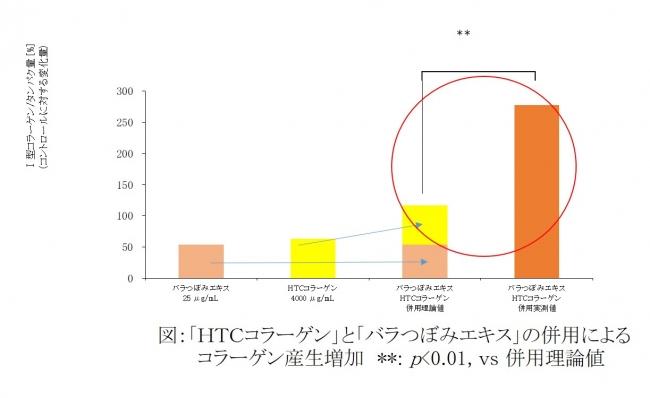 ファンケル「HTCコラーゲン」と「バラつぼみエキス」の組み合わせでコラーゲン産生促進に関する特許を取得